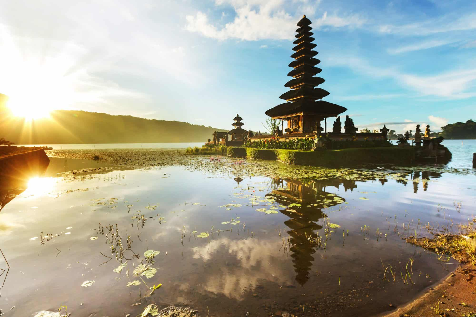 Lessons From Bali